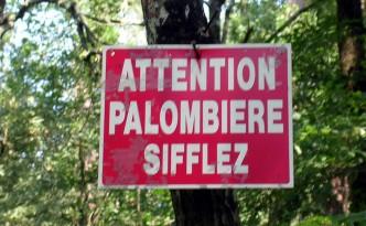 Palombière_2